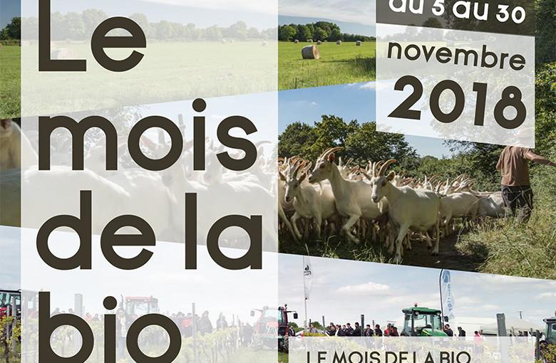 Article NA - NOvembre bio - Image Une