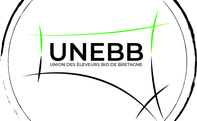 LOGO UNEBB FINAL